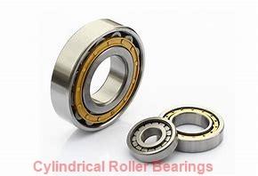 ISO BK1520 cylindrical roller bearings