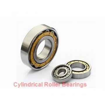 170 mm x 260 mm x 122 mm  NKE NNCF5034-V cylindrical roller bearings