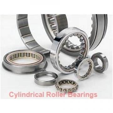 320 mm x 440 mm x 118 mm  NSK NNCF4964V cylindrical roller bearings