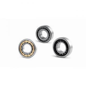 Toyana BK384824 cylindrical roller bearings
